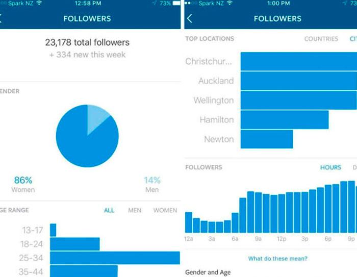 estatisticas-instagram